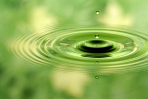 Clear green water drop